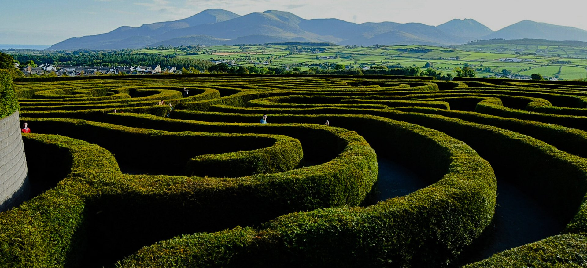 Activity Tours - Castlewellen Maze